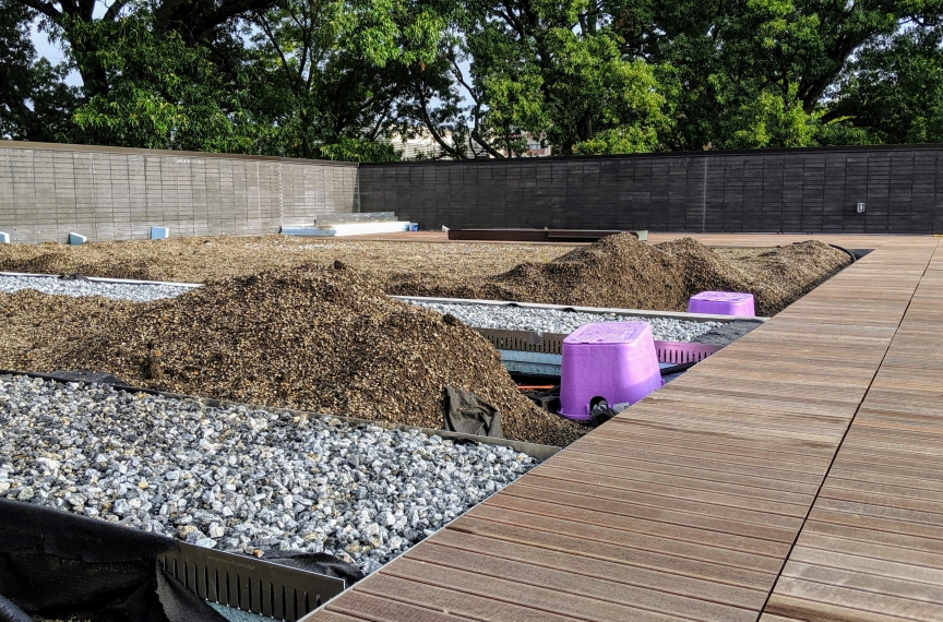 The rooftop garden's soil is also part of the rainfall management system.