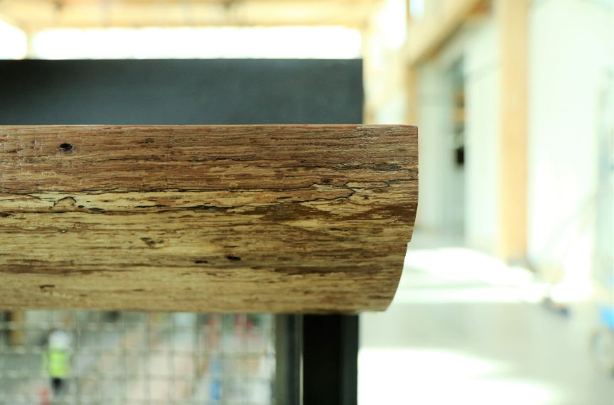 "An example of a storm-fallen tree being turned into a ""live edge"" counter in the building."
